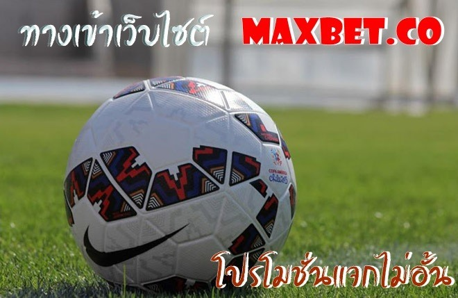 icon maxbet