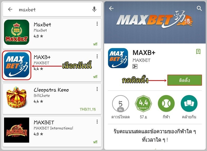 maxbet download