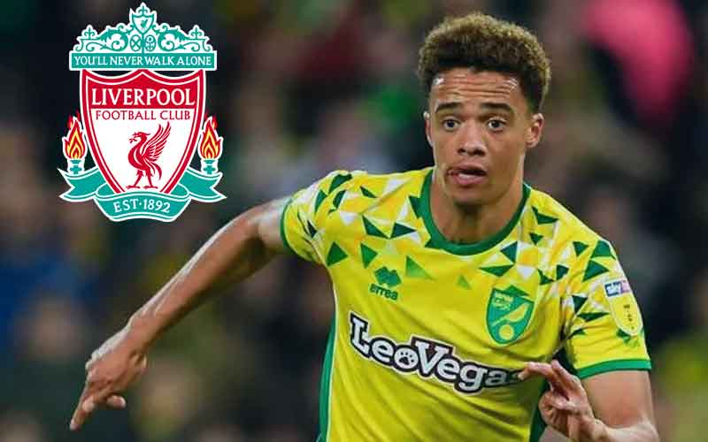 news-site-Liverpool-preparing-to-buy-Jamal-Lewis-to-strengthen-the-army